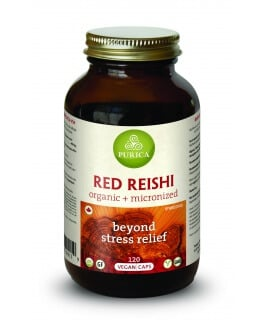 Red Reishi Vegan